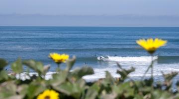 Esmoriz: Oporto Family & Surf